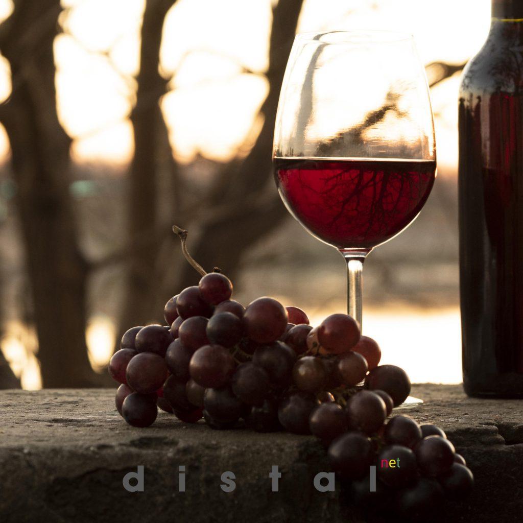 Catas de vino en Vinoteca Distalnet