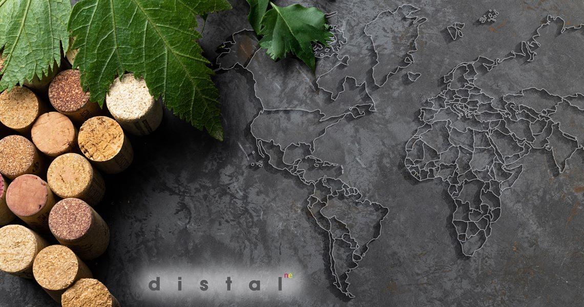 Catas de vino Vinoteca Distalnet los mejores vinos del mundo