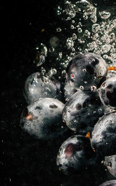 castas de vino vinoteca distalnet.es los mejores vinos del mundo